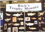 Rick's trophy mounts...