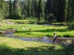 A beautiful meadow along the hike...